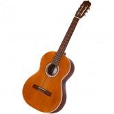 گیتار پارسی M5