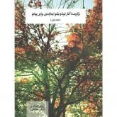 کتاب برگزیده آثار لودویکو ایناودی برای پیانو جلد اول